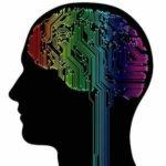 Nutze das Gehirn